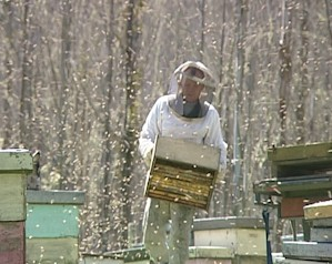 Checking Hives in the Winter
